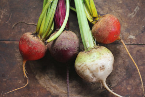 beets from the Greenmarket