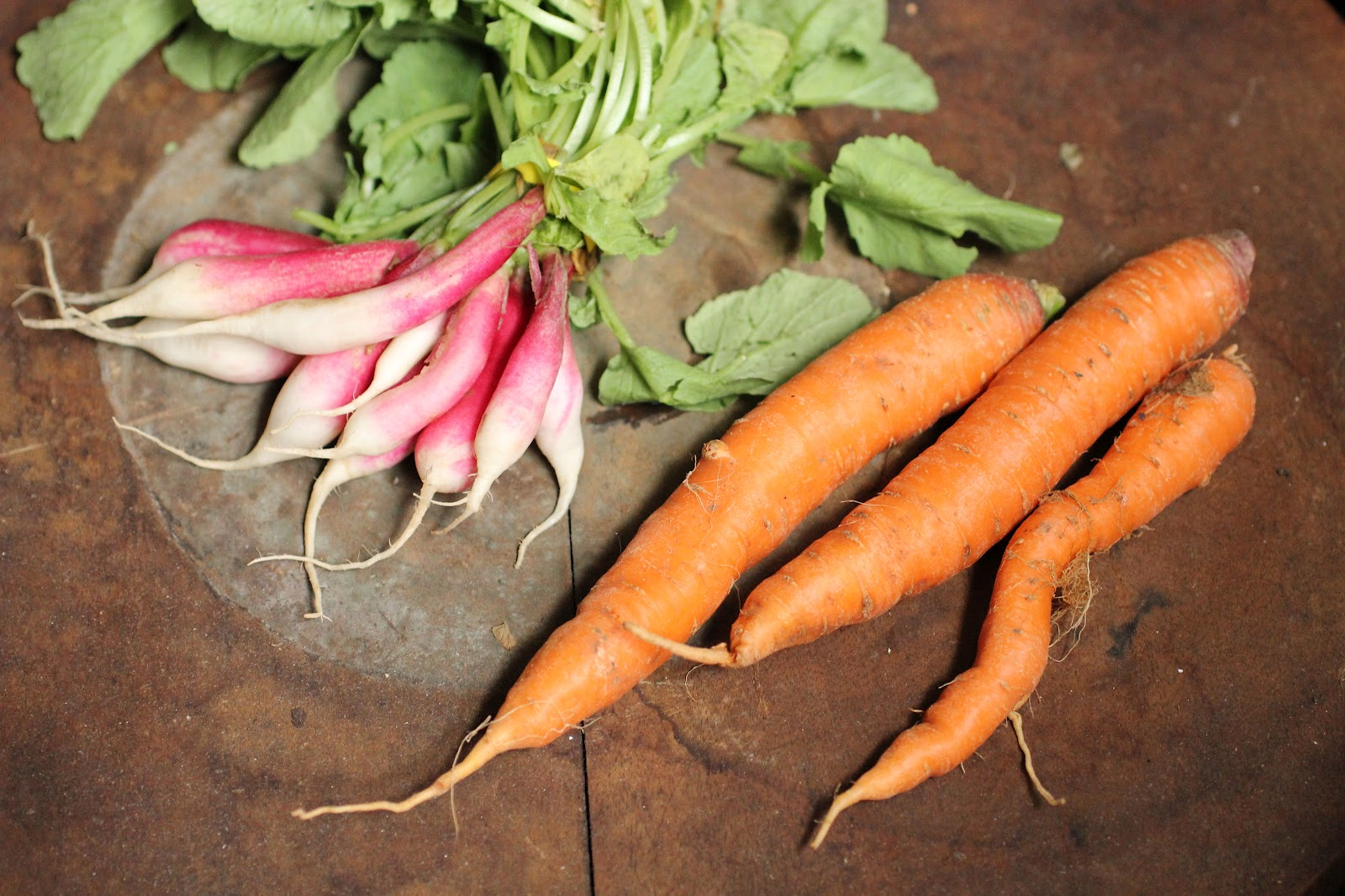 French radish and carrots