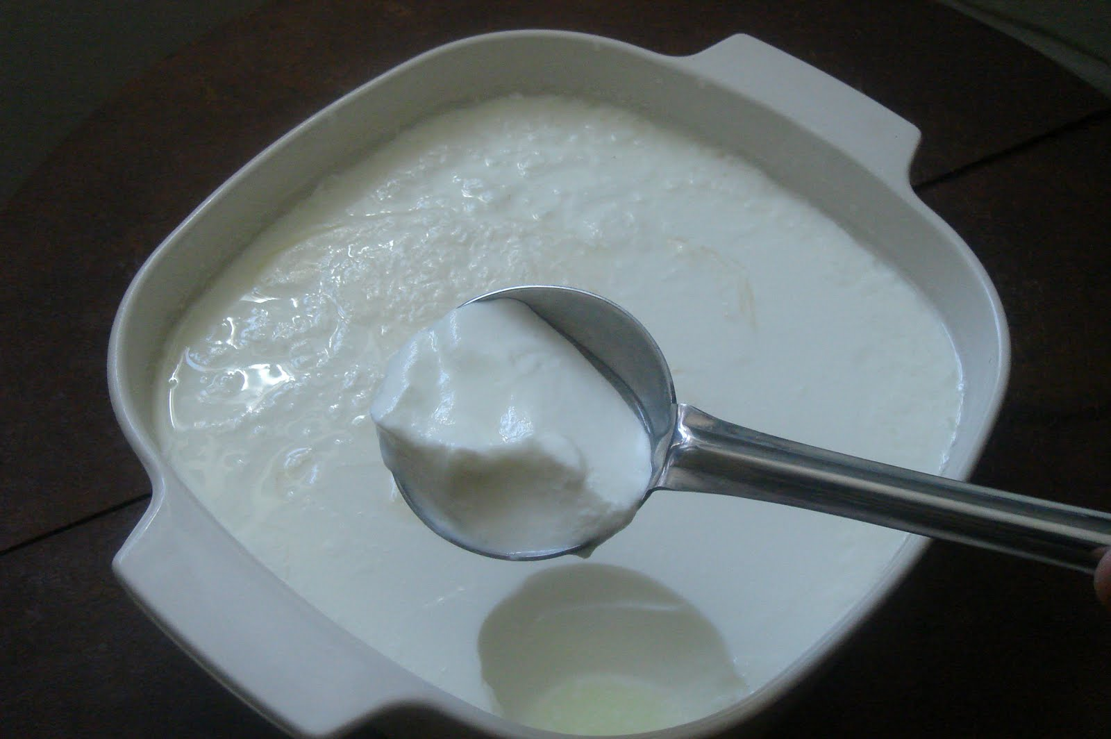 How To Make Homemade Yogurt Abcd S Of Cooking Abcd S Of Cooking